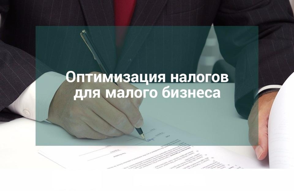 Оптимизация налогов малого бизнеса. Реакция налоговой инспекции